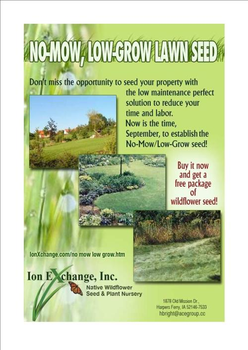 Buy No-Mow-Low Grow grass seed and get a free gift