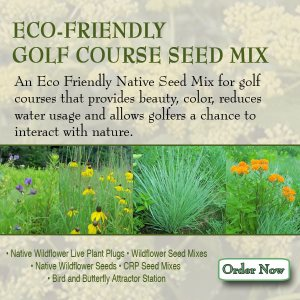 Grass Seed for Golf Cources