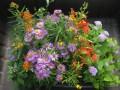 Mothers Garden